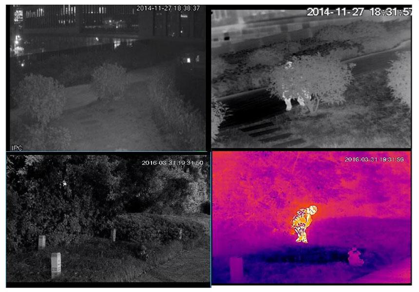 Uso privato delle telecamere termiche: sicurezza residenziale